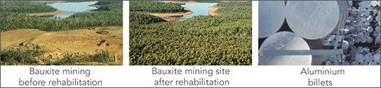 Bauxite Rehabilitation